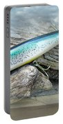 Ajs Baby Weakfish Saltwater Swimmer Fishing Lure Portable Battery Charger