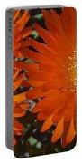 Orange Burst Akuli Kuli Portable Battery Charger