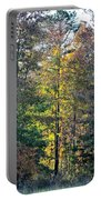 Alabama Forest In Autumn 2012 Portable Battery Charger