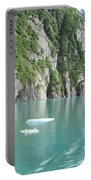 Alaska Teal Tranquility Portable Battery Charger