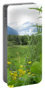 Alaskan Glacier Beauty Portable Battery Charger