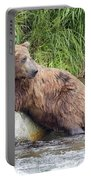 Alaskan Grizzly Portable Battery Charger