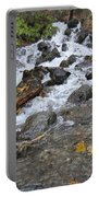 Alaskan Waterfall Portable Battery Charger