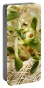 Alfalfa Sprouts Portable Battery Charger