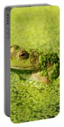 Algae Covered Frog Portable Battery Charger