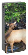 All Alone Portable Battery Charger