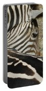 All Stripes Zebra 2 Portable Battery Charger