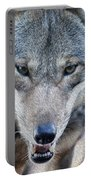 All Wolf Portable Battery Charger
