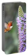 Allen Hummingbird On Flower Portable Battery Charger