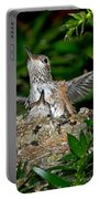 Allens Hummingbird Chicks Portable Battery Charger