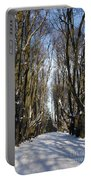 Alley In The Snow Portable Battery Charger