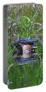 Alligator Appetite Portable Battery Charger