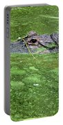 Alligator In Swamp Portable Battery Charger