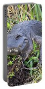 Alligator Overbite Portable Battery Charger