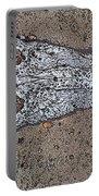 Alligator Skull Fossil 1 Portable Battery Charger