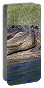 Alligator Sunning Portable Battery Charger