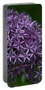 Allium Duet Portable Battery Charger