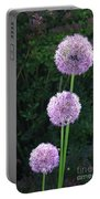 Alliums Portable Battery Charger