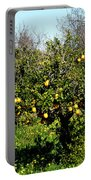 Almanzora Mountain Lemons Winther Spain Portable Battery Charger
