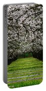 Almond Orchard Portable Battery Charger