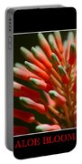 Aloe Bloom Window Portable Battery Charger