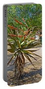 Aloe Plant In Kruger National Park-south Africa Portable Battery Charger