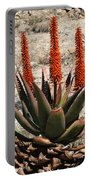 Aloe Vera At The Arboretum Portable Battery Charger
