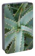 Aloe Vera  Portable Battery Charger