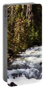Along American River Portable Battery Charger