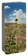 Along Route 66 In Arizona Portable Battery Charger
