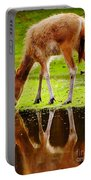 Along The Water Grazing Pere David's Deer Portable Battery Charger