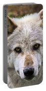 Alpha Male Wolf Portable Battery Charger