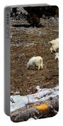 Alpine Mountain Goats Portable Battery Charger
