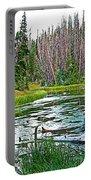 Alpine Pond On Alpine Pond Trail In Cedar Breaks National Monument-utah Portable Battery Charger