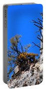 Alpine Wyoming Portable Battery Charger
