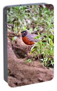 Am Robin Portable Battery Charger