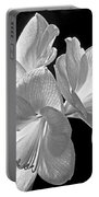 Amaryllis - Bw Portable Battery Charger