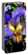 Amazing Iris Portable Battery Charger