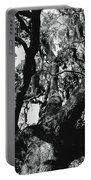 Amazing Oak Tree Portable Battery Charger