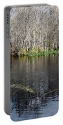 Reflections - On The - Silver River Portable Battery Charger