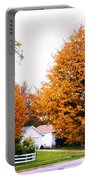 Amber Autumn Twins  Portable Battery Charger