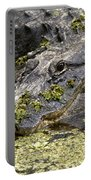 American Alligator Print Portable Battery Charger
