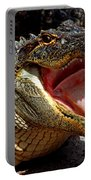 American Alligator Threat Display Portable Battery Charger