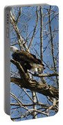American Bald Eagle In Illinois Portable Battery Charger