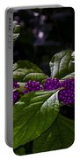 American Beauty Berry II Portable Battery Charger