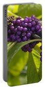 American Beautyberry -callicarpa Americana Portable Battery Charger