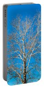 American Beech Portable Battery Charger