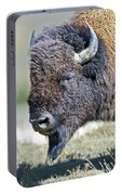 American Bison Closeup Portable Battery Charger