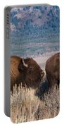 American Bison Trio Portable Battery Charger
