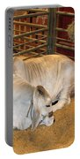 American Brahman Heifer Portable Battery Charger